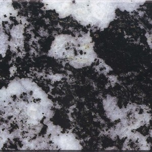 Granite  Leopard White G – 1313